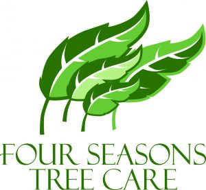 Four Seasons Tree Care, Driven For Life